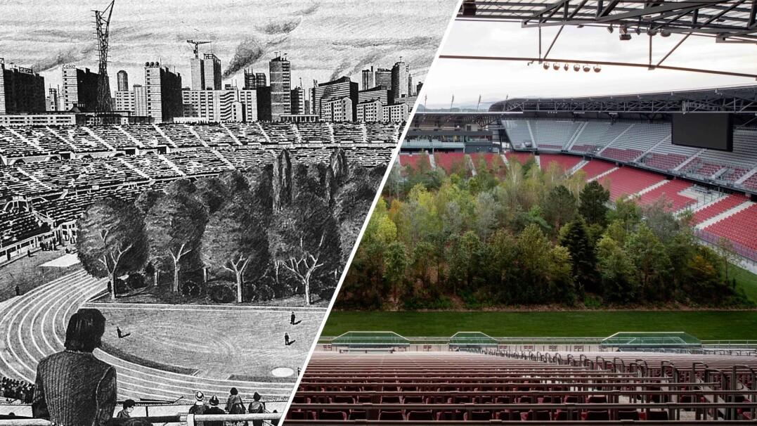 Na tym stadionie grali Polacy, teraz rośnie tam las