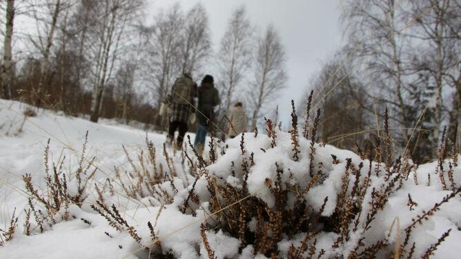 Pogoda na dziś: zimowe opady. <br />Od 2 do 6 stopni Celsjusza