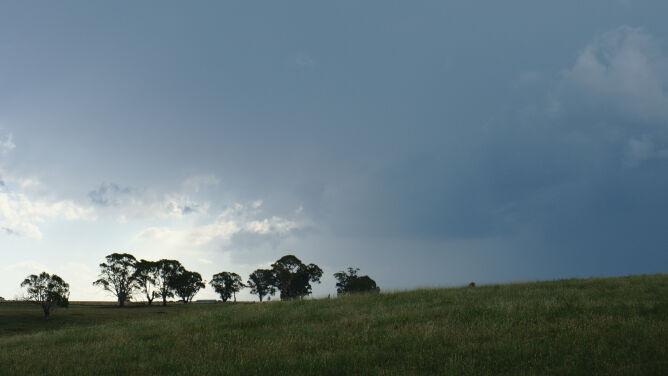 Prognoza pogody na dziś: przelotne opady i burze, do 26 stopni