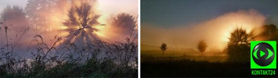 """""""Promienie słoneczne przechodzące przez gałęzie wytworzyły piękne widoki"""""""