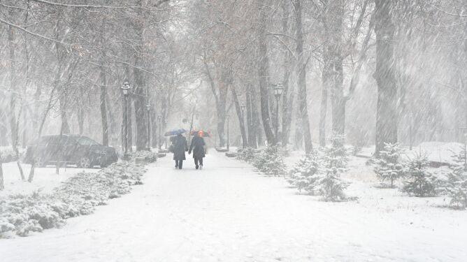 Pogoda na jutro: w niektórych regionach sypnie śniegiem, i to w niemałej ilości
