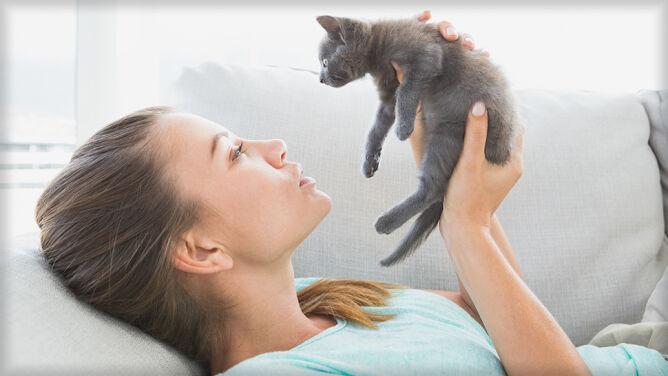 Kocięta i bezpańskie koty mogą nas zabić. Choroba kociego pazura częstsza i groźniejsza, niż myślano