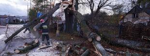 Tragiczne w skutkach wichury: tysiące domów bez prądu, ponad 1400 interwencji straży