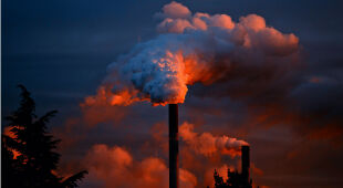 Klimatolog o spalaniu węgla