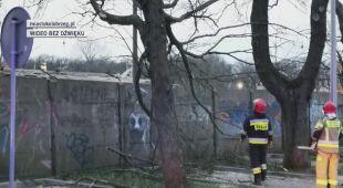 Strażacy usuwali złamany konar drzewa